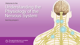 Understanding the Physiology of the Nervous System