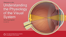 Understanding the Physiology of the Visual System