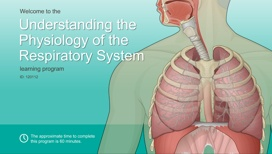 Understanding the Physiology of the Respiratory System