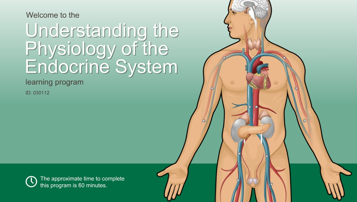 Understanding The Physiology Of The Endocrine System Adam Ondemand