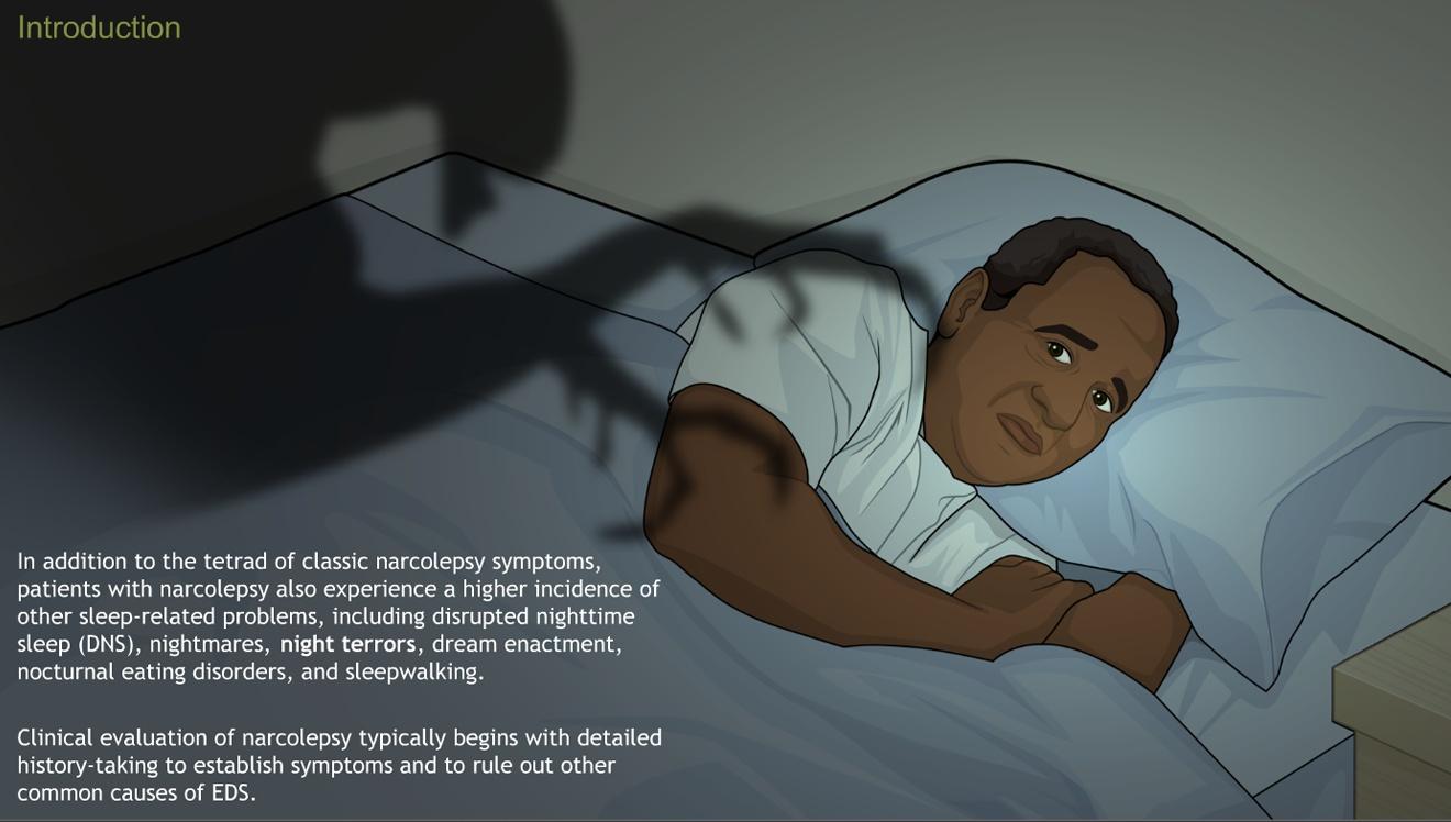 understanding narcolepsy-a.d.a.m. ondemand