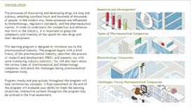 The Pharmaceutical Industry – From Lab to Market